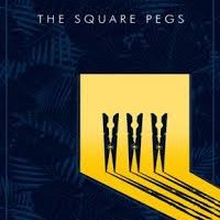 The Square Pegs by David Obasa